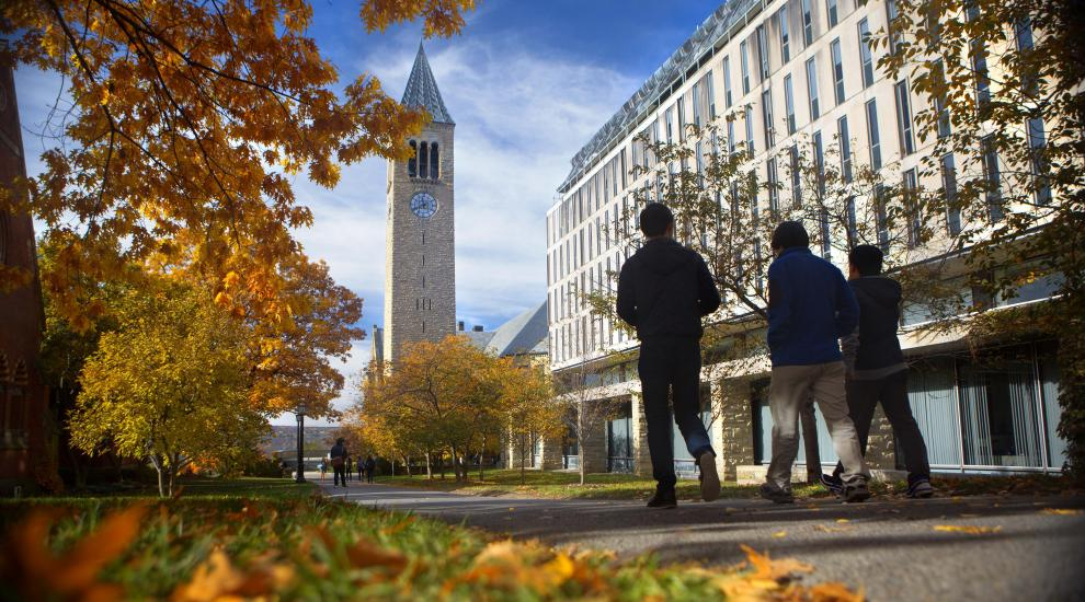 Students walking on campus during the autumn.